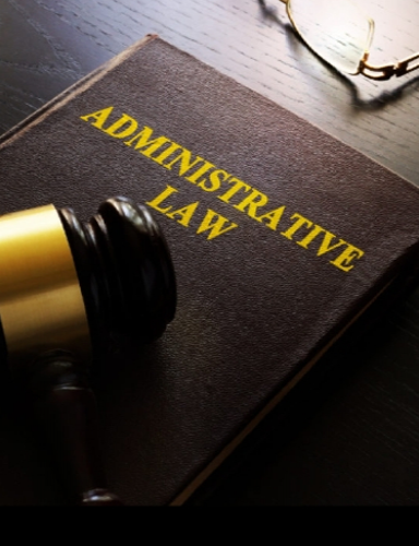 Administrative Law & Governmental Sector